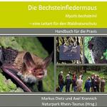 Die Bechsteinfledermaus – eine Leitart für den Waldnaturschutz