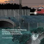Fledermausschutz bei der Planung, Gestaltung und Sanierung von Verkehrsinfrastrukturen