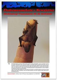 Neue Ausgabe des Fledermausschutz-Newsletters aus Mecklenburg-Vorpommern erschienen