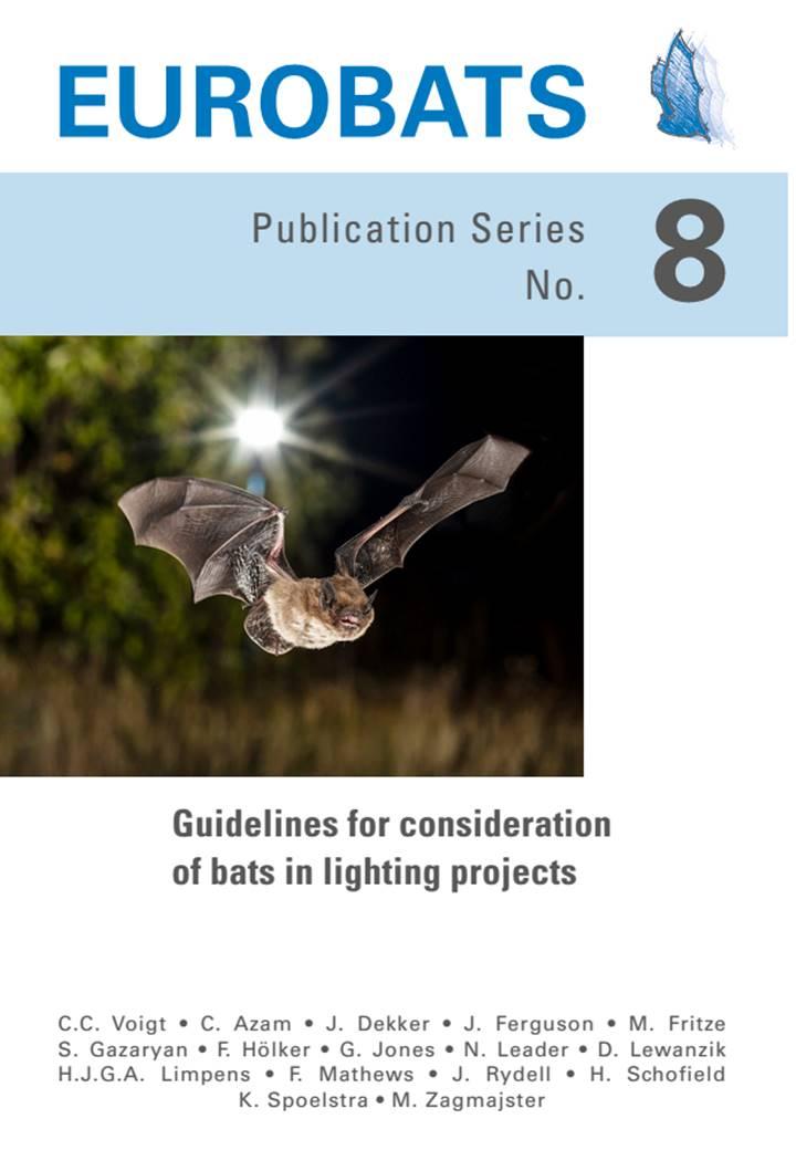Leitfaden für die Berücksichtigung von Fledermäusen bei Beleuchtungsprojekten