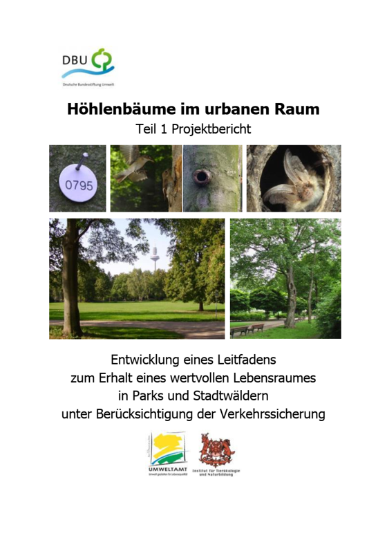 Höhlenbäume im urbanen Raum, Teil 1
