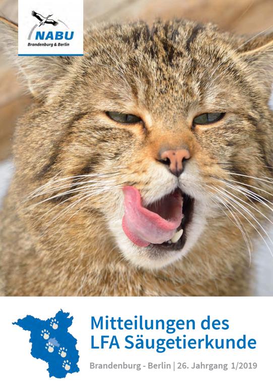 Newsletter - Säugetierkundliche Mitteilungen NABU LFA Säugetierkunde Brandenburg-Berlin