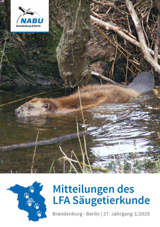 Mitteilungen des LFA Säugetierkunde NABU Berlin-Brandenburg 27. Jahrgang 1/2020