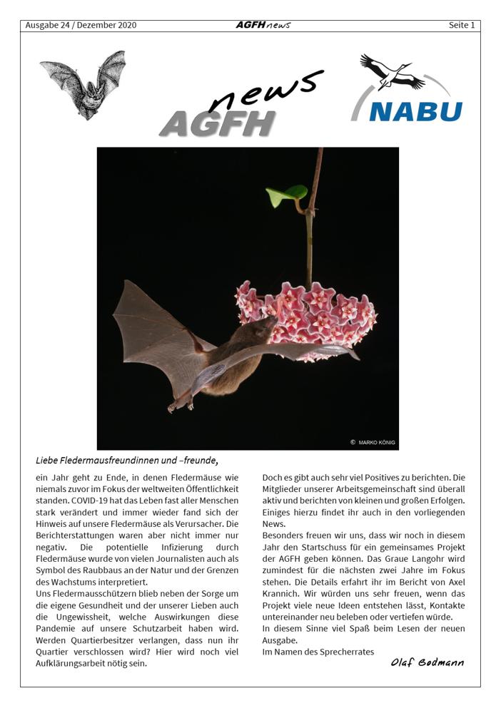 AGFH News (Ausgabe 24, Dezember 2020)