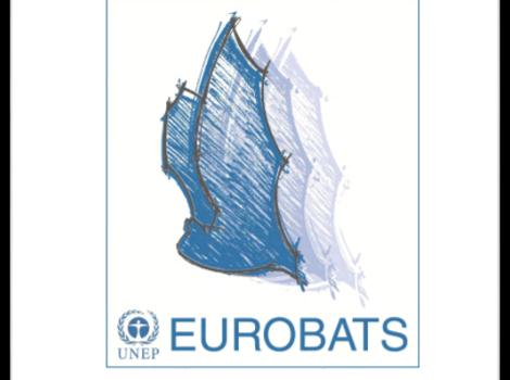 """BfN Script """"Fledermaussschutz in Europa III"""" released (German language)"""