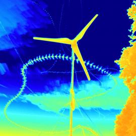 Kollisionsrisiko von Fledermäusen mit Kleinwindkraftanlagen: Worst-Case-Szenarien in der Nähe von Wochenstuben, Flugwegen und Jagdstrukturen