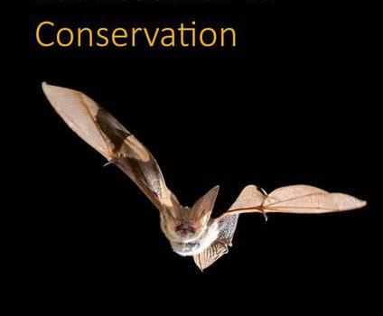 """Neue Ausgabe vom """"Journal of Bat Research and Conservation"""""""