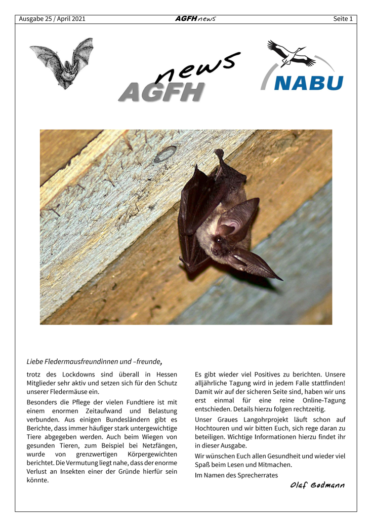 AGFH News (Ausgabe 25, April 2021)